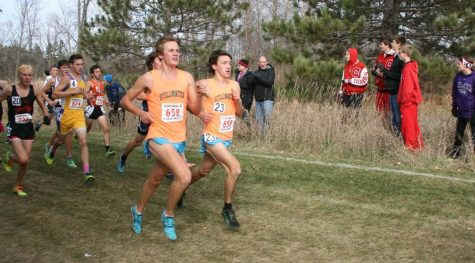 Third place finish in State for boys cross country