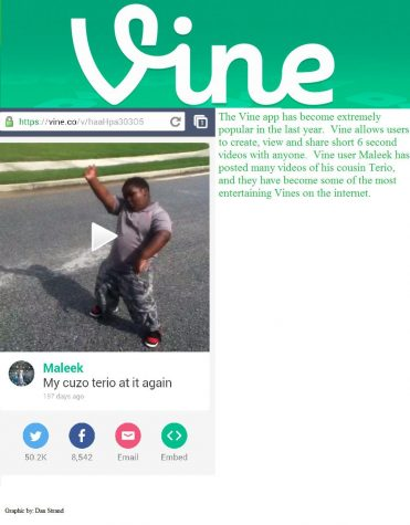 Vine gains popularity among social networkers