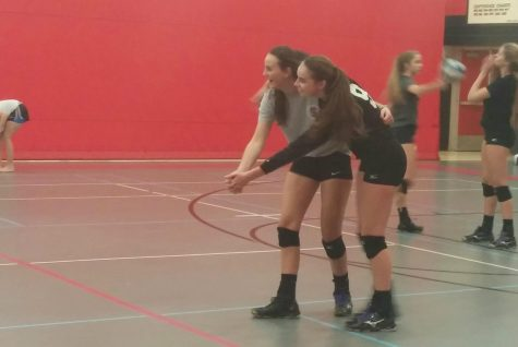 Volleyball takes second in conference