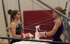 Gymnastics prepares for upcoming season