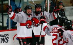 Boys hockey has high expectations for rest of season