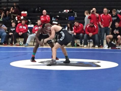 Wrestling team pins down a successful season