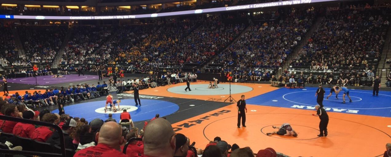 Pinning down state wrestling tournament