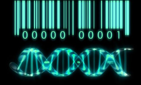 The patenting of human genes is immoral
