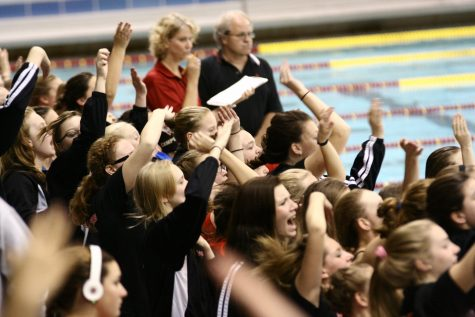 Swim and dive at True Team state