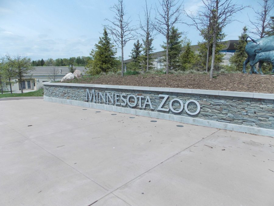 """The Minnesota Zoo offered a special during the cold winter months featuring reduced ticket prices. Many people took advantage of the special. Nico Coen said, """"I had a lot of fun at the zoo. It was nice to get out of the cold and also see some cool animals!"""""""
