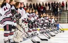Hockey strides into sections