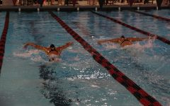 Swimmers are neck in neck as they push towards the final lap.