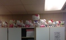 Shannon shares passion for Hello Kitty