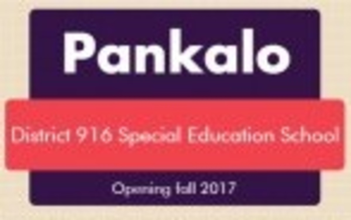 Pankalo provides specialized learning opportunities for disabled students