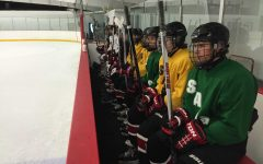 High expectations for boys hockey season
