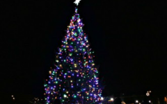 "The Twinkle Parade starts at the Dock Cafe and ends with the lighting of a 40 ft balsam fir tree. Jerry Helmberger explained, ""Overall, it was a fabulous event and great for the city and the kids."""