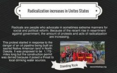 Reactions of increased radicalization in United States