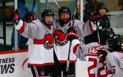 Boys hockey has high expectations for rest of season