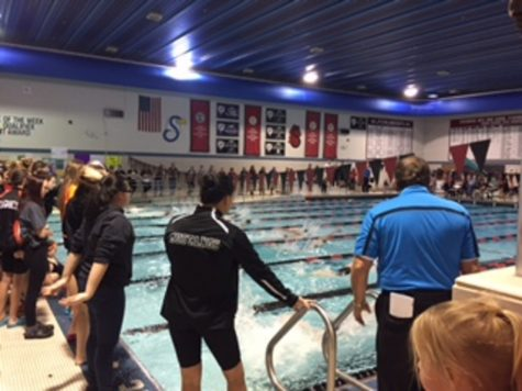 Members of the swim and dive team compete in the section meet on Nov. 10 as fans and teammates cheer them on.