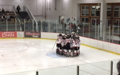 Boys, girls hockey beings season strong