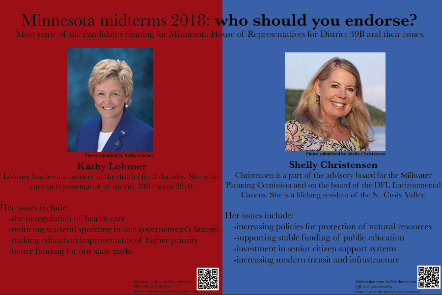 Minnesota midterms 2018: who should you endorse?