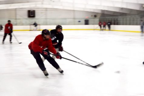 Boys, girls hockey begin season