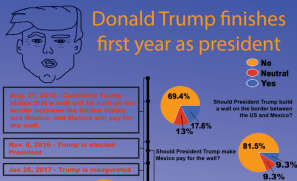 Recap of Donald Trump's first year as president