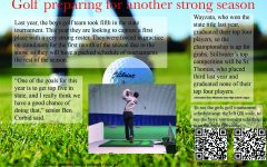 Simulators do not slow boys golf
