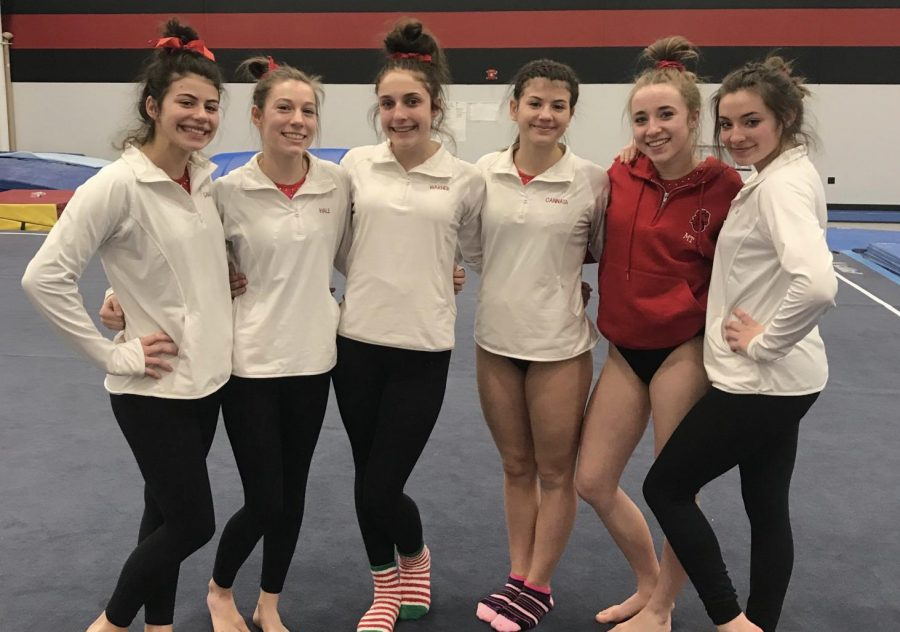 State champion gymnasts prepare for upcoming season