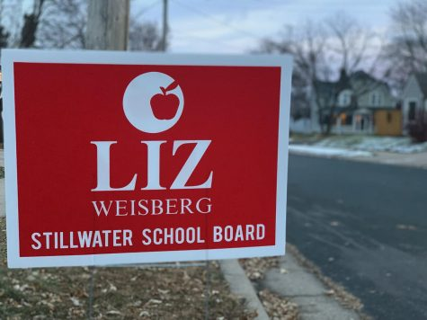 School board elect Liz Weisberg had signs  placed all over the district and won 16.6 percent of the votes.