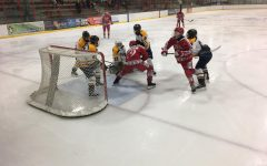 Boys hockey team begins section play