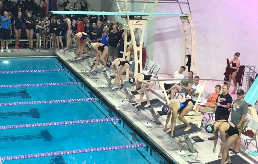Ponies swimming 500 freestyle at White Bear invitational at St. Kate's. Winning the meet by 149.5 points.