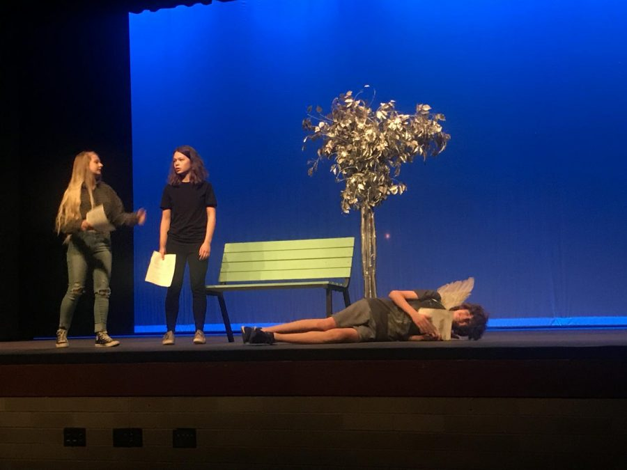 Juniors Ella Goette and Sandy Liu and freshman Mason rehearse for the play two hours prior to performing in front of a live audience. These actors have run through the play many times. They continue to work hard and stay determined to put on a good show.