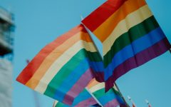 LGBT employees wrestle with Supreme Court over discrimination and protection
