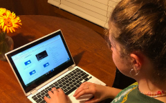Junior Madeline Stricker learns from home. Although she is enrolled in the B-day hybrid option, she learns from home three days a week on platforms like Schoology and Zoom.