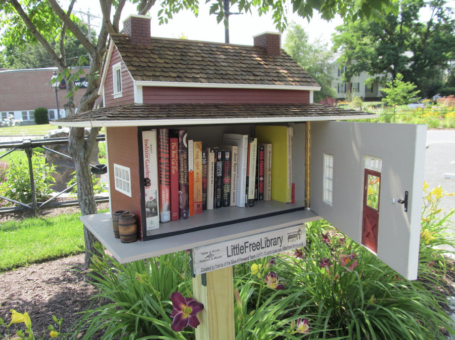 Sophomore+Hannah+Hebert+uses+her+Little+Free+Library+she+built+for+the+community+in+front+of+her+house.+She+hopes+people+will+use+it+to+start+enjoying+reading+as+much+as+she+does.+%0A