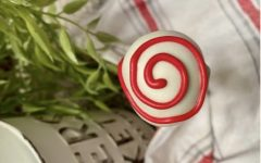 This image is of a cake pop from the top view with the design of a swirl made from the frosting.