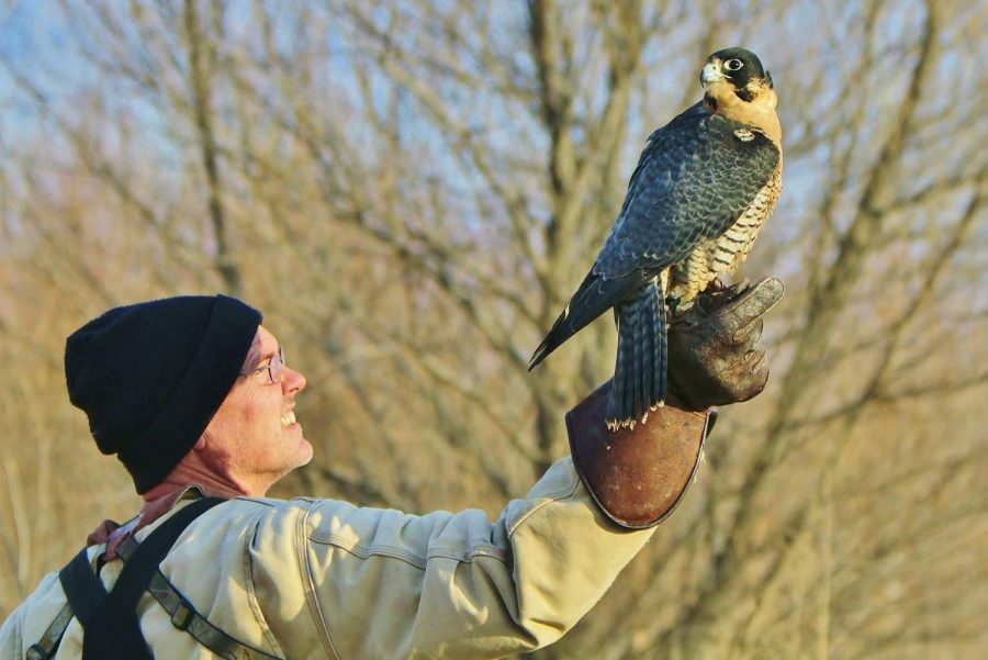 Andrew Weaver outside with one of his raptors.