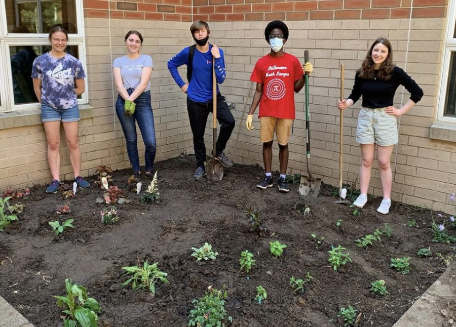 Juniors Addy Foote, Claire Abbott and grace Storm have decided to plant a garden in the courtyard at the high school to help society and spread awareness.