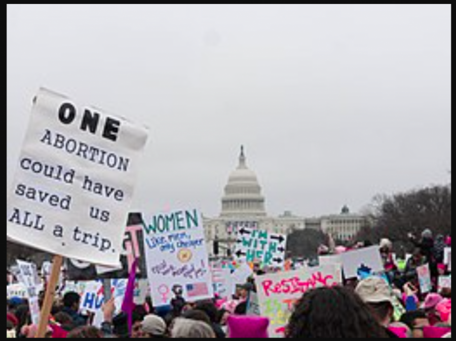 Womens march at the U.S. capital in order to keep Roe v. Wade in place and protect a womans abortion right.